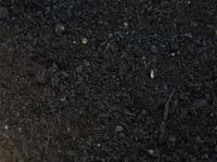 Barr Tech Compost